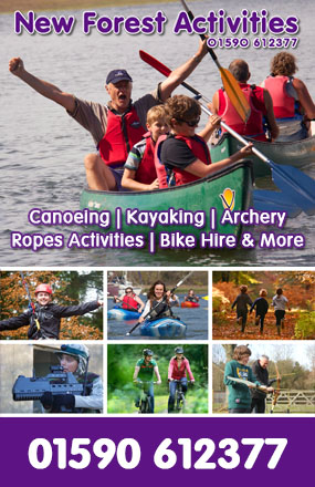 New Forest Activities Advert